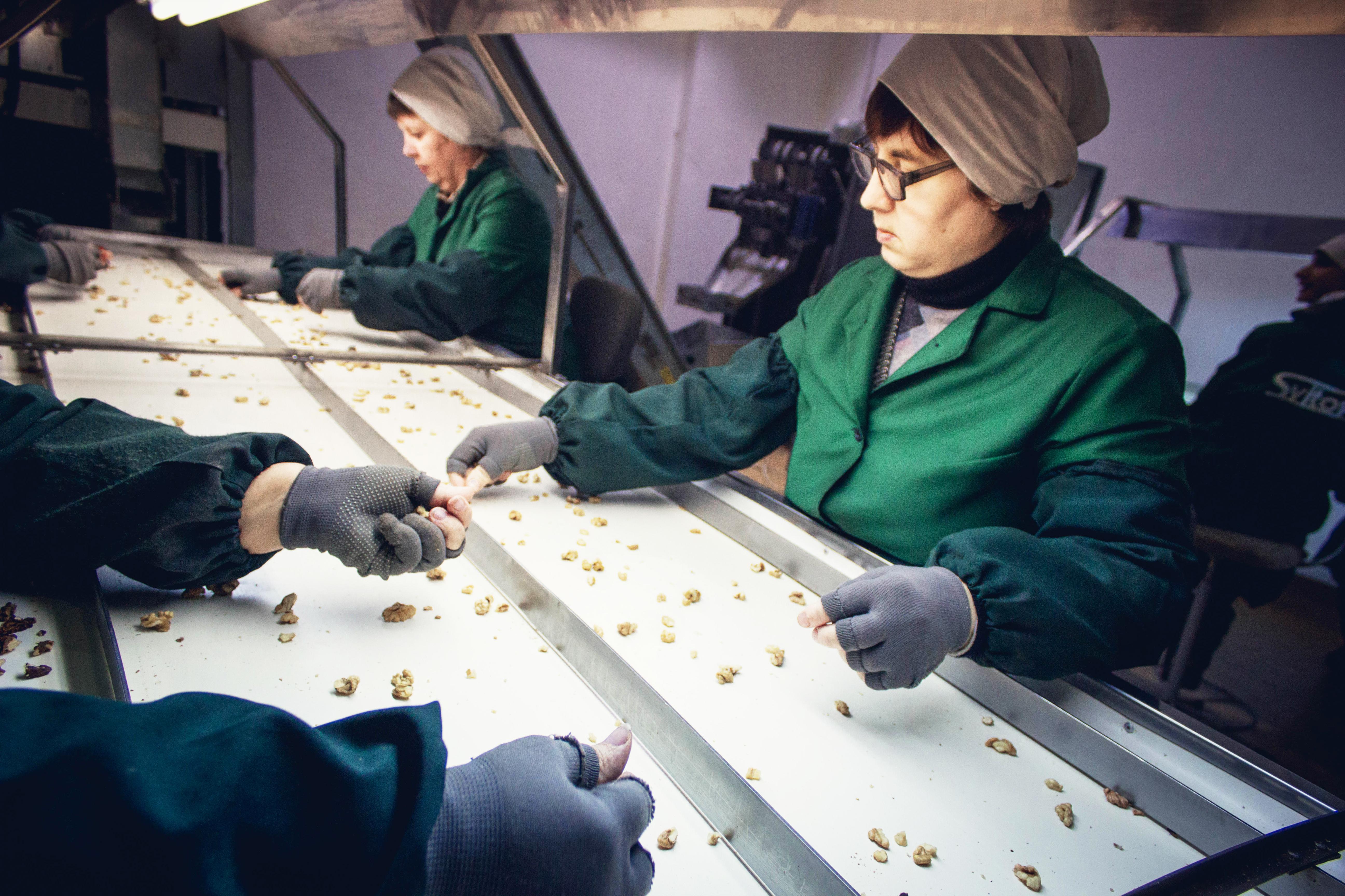 Где купить грецкий орех в Украине