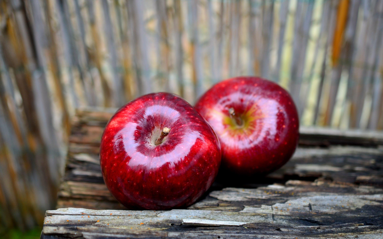 Закупка яблок оптом в Украине